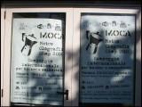 MOCA 2004 (18/1110)