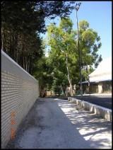 MOCA 2004 (795/1110)